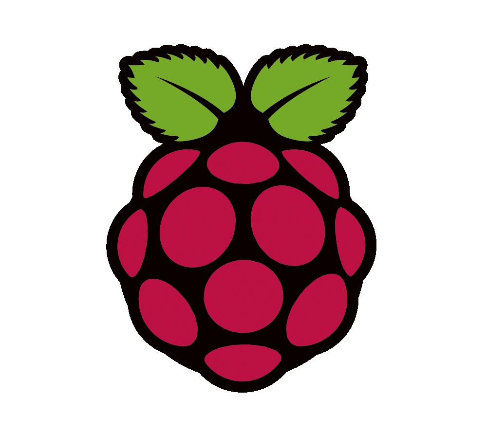 xd3io-R-Pi_Logo
